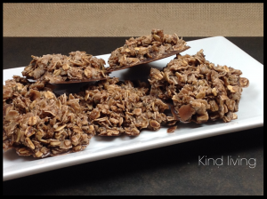raw cacao hemp macaroons
