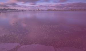 Lake Couchiching - Purple Overlay
